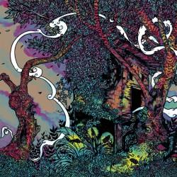 DHVANI - Angustium [CD]