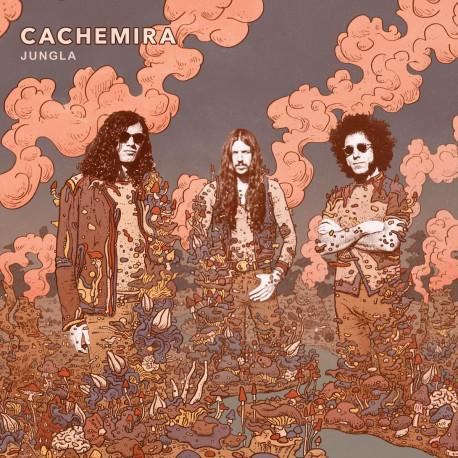 CACHEMIRA - Jungla